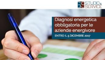 SCADENZA DIAGNOSI ENERGETICA ENERGIVORI – ANNO 2015